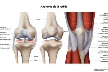 Ankle Arthroscopy Surgery